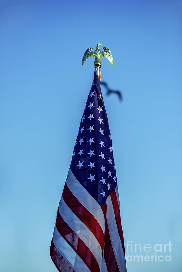 Proudly Standing American Flag Photograph