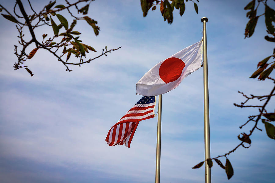 American Japanese Flags 2 by William Chizek