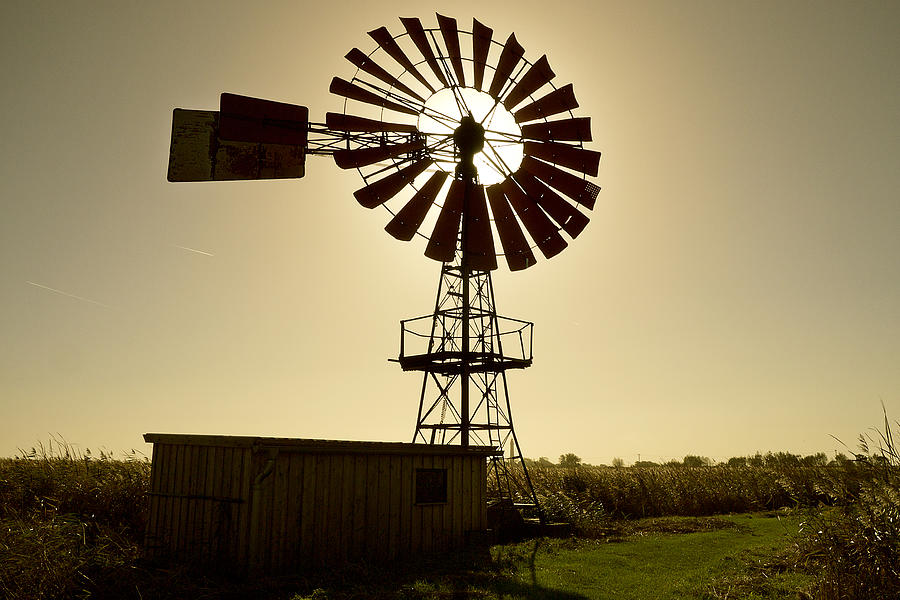 American-style windmill in backlight Photograph by Bernd Schunack