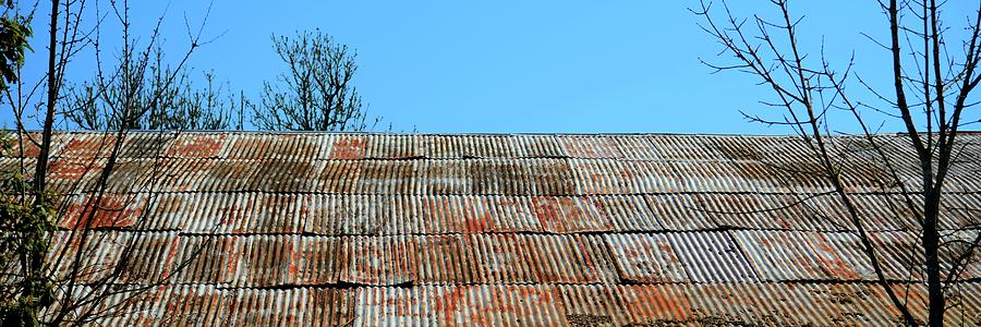 Amity Ancient Metal Roof Photograph