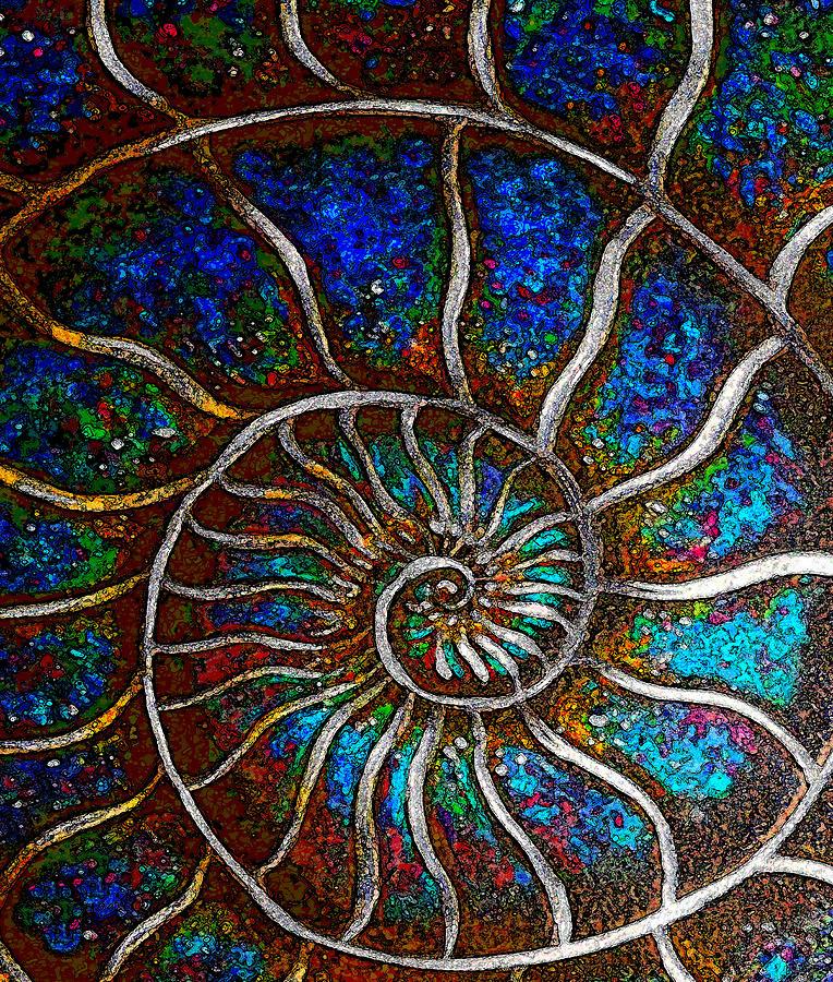 Ammonite E Mixed Media