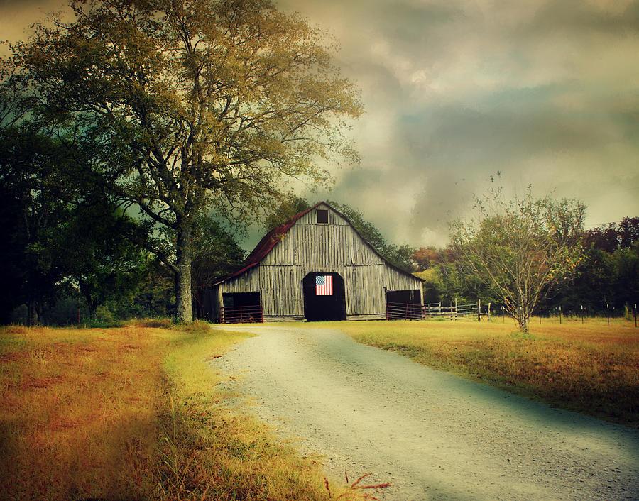 An American Dream by Julie Hamilton