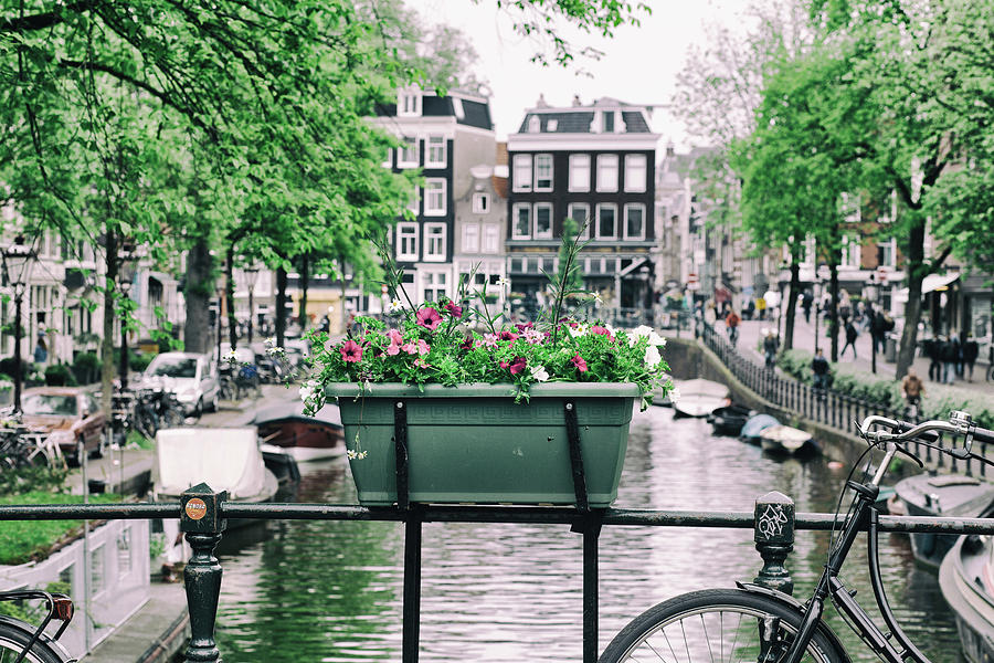 An Amsterdam Spring by Georgia Fowler