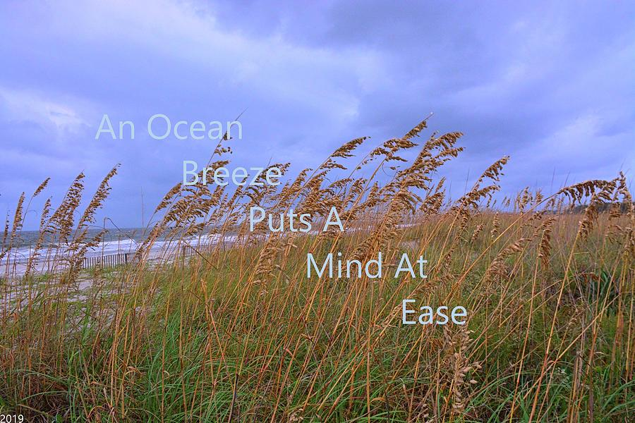 An Ocean Breeze Puts A Mind At Ease by Lisa Wooten