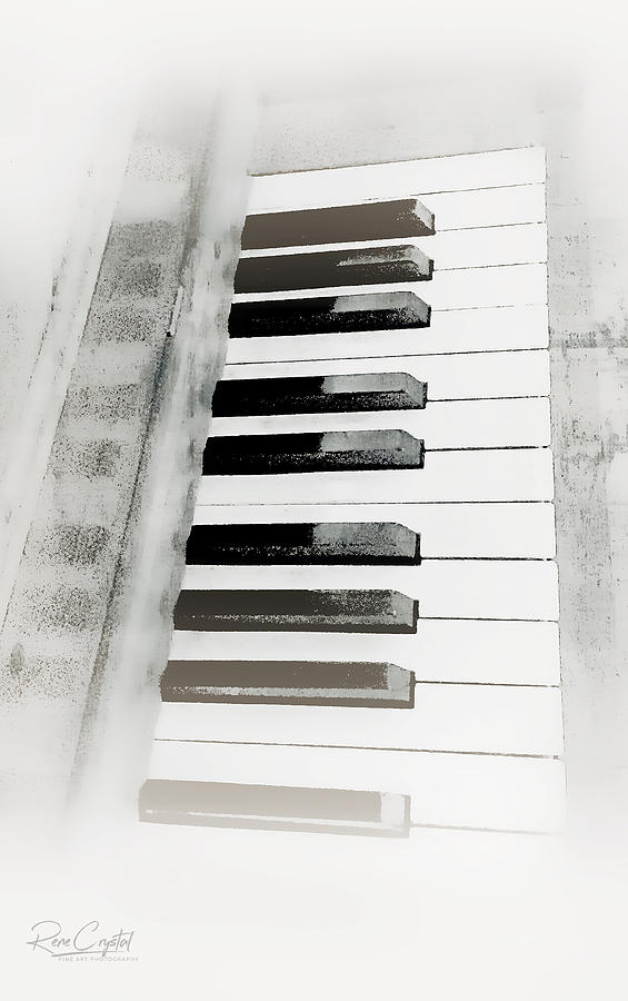 An Octave In Black N White by Rene Crystal