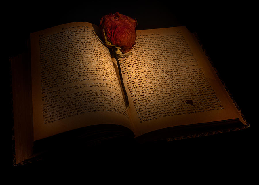 An old book by the candlelight  by Alessandra RC