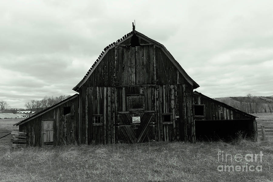 An Old Wooden Montana Barn Photograph