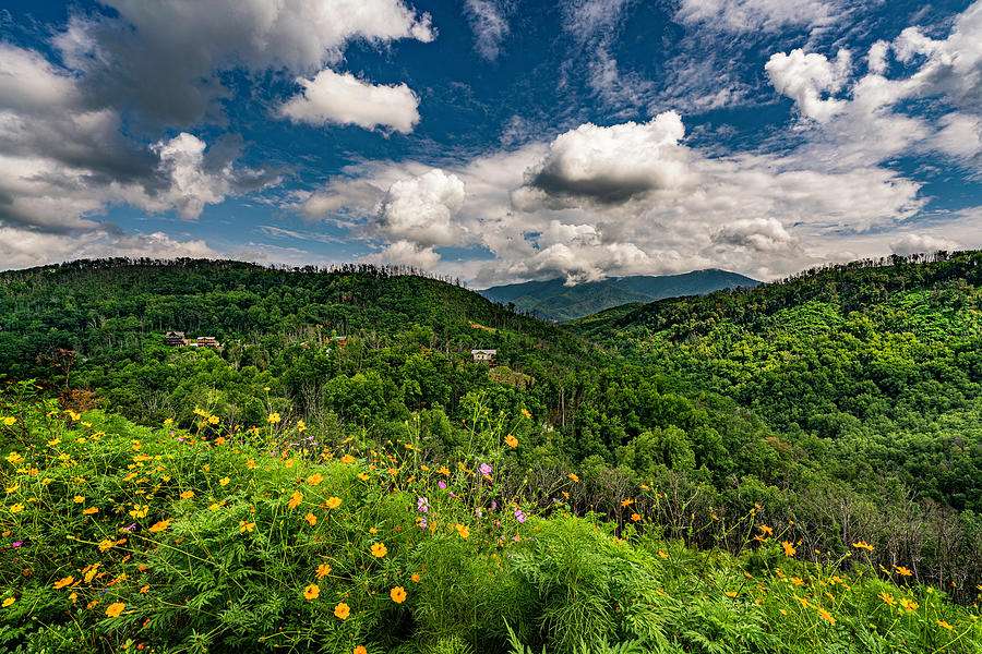 Anakeesta in the Great Smoky Mountains by Dave Morgan