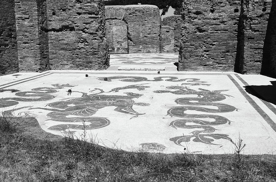 Ancient Baths of Neptune Ruins Tile Mosaic Ostia Antica Black and White by Shawn O'Brien