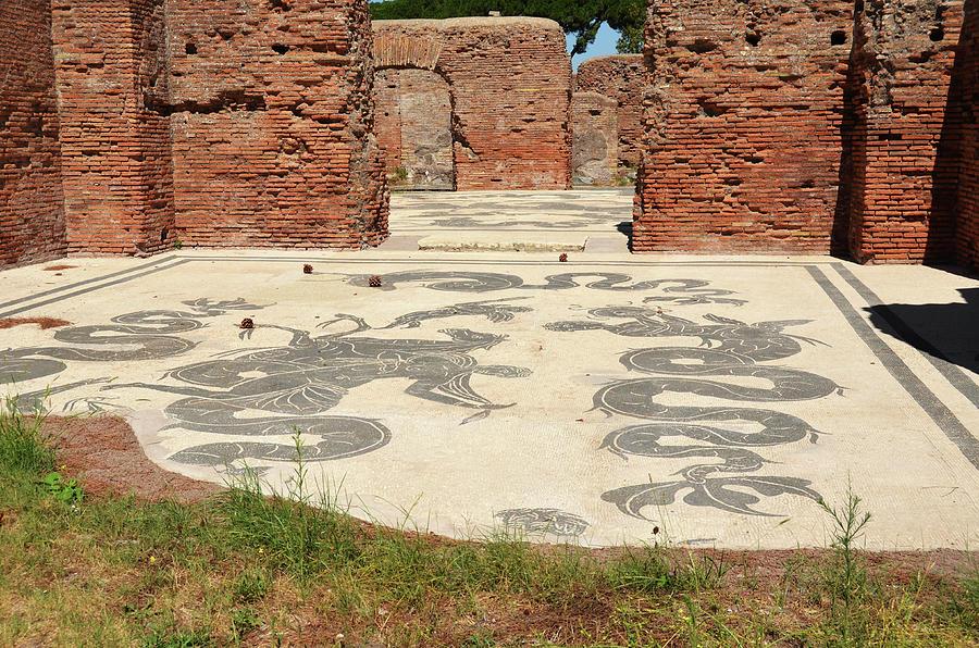 Ancient Baths of Neptune Ruins Tile Mosaic Ostia Antica by Shawn O'Brien