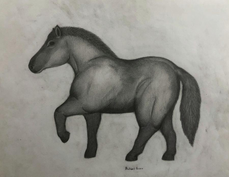 Ancient Horse Drawing