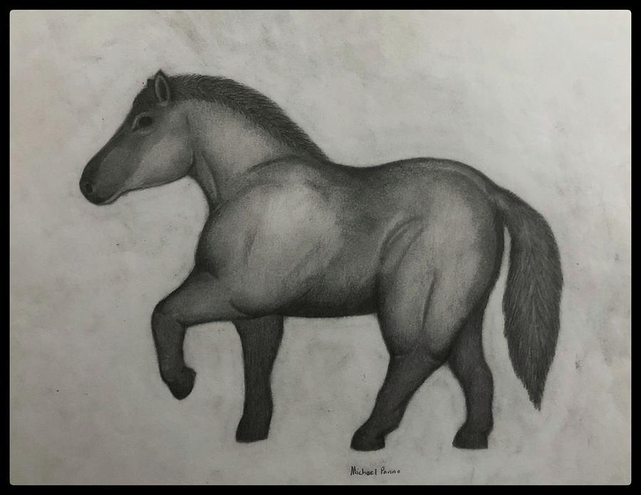 Ancient Horse W/ Border Drawing