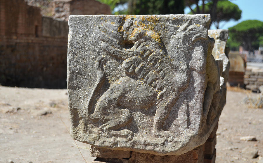 Ancient Roman Griffin Stone Carving at Ostia Antica near Rome by Shawn O'Brien