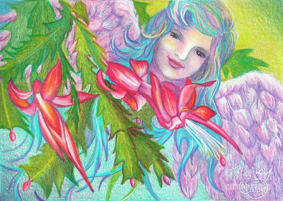Christmas Cactus Drawing - Angel Cactus by Nancy Cupp