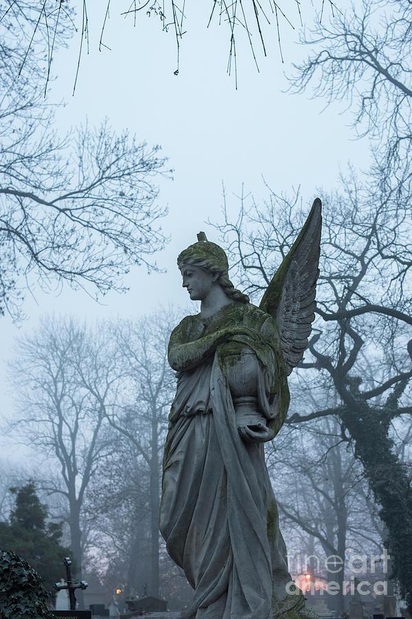 Angel by Juli Scalzi