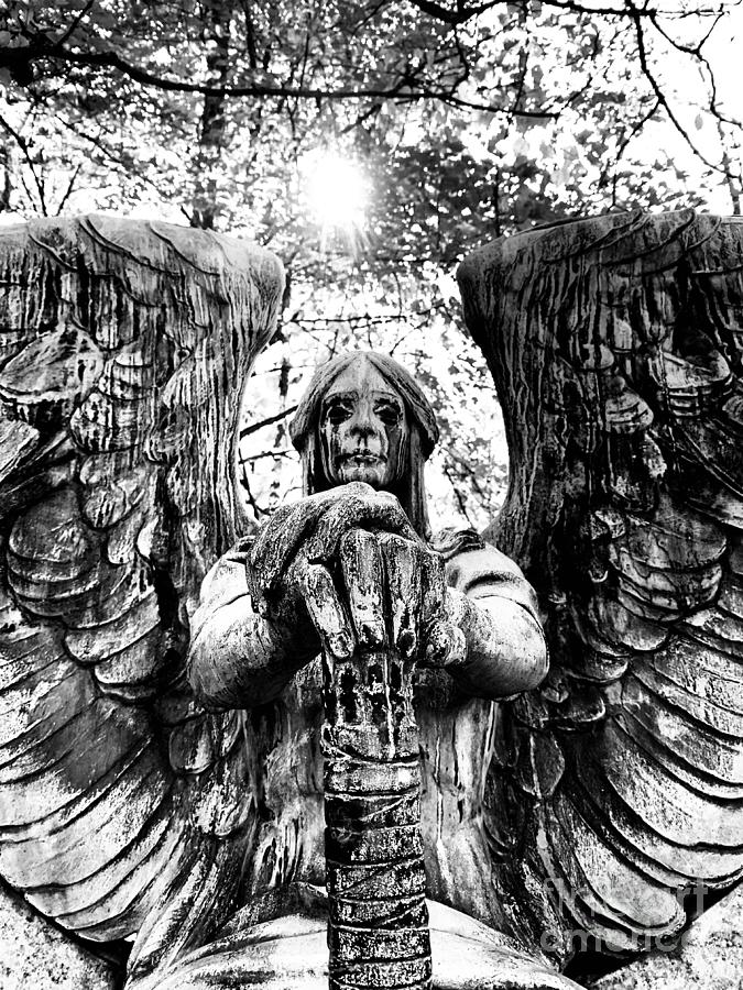Angel Of The Day Photograph