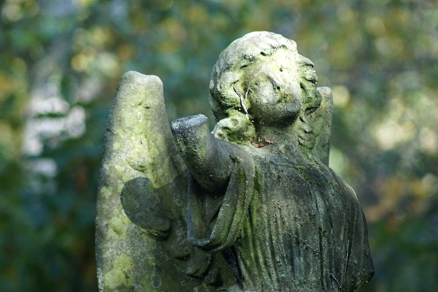 angel on a cemetery by Jolly Van der Velden