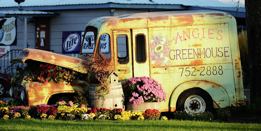 Angies Wagon Photograph