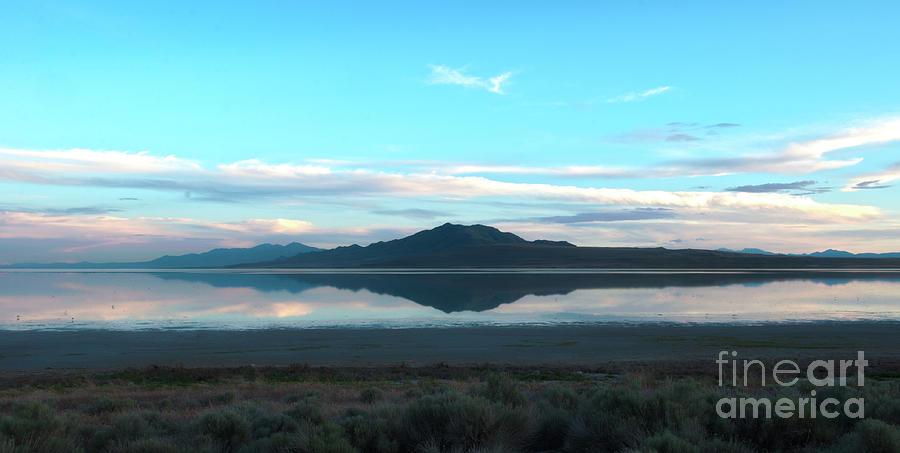 Salt Lake City Photograph - Antelope State Park in Salt Lake City by Dejan Jovanovic