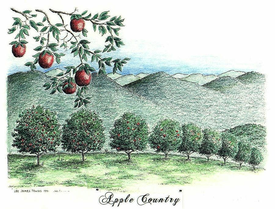 Apple Orchard Drawing - Apple Country by Lee Pantas
