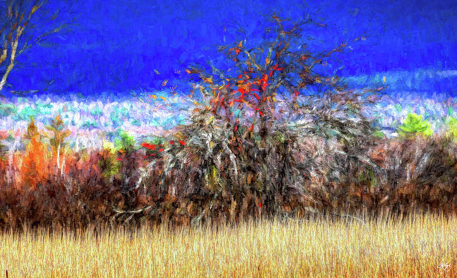 Apple in a Hedgerow No 1 by Wayne King
