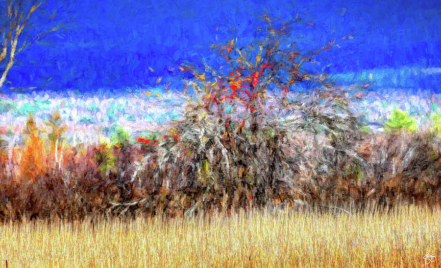 Apple in a Hedgerow No 2 by Wayne King