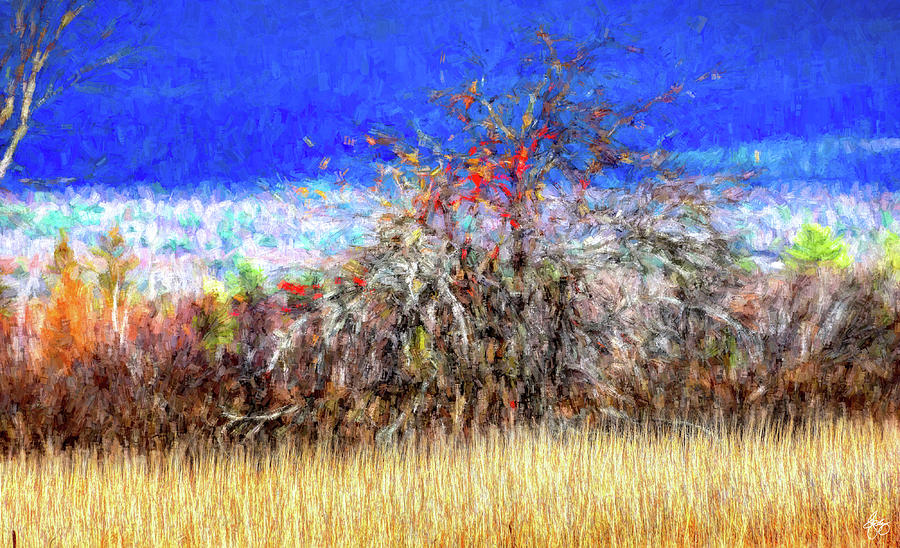 Apple in a Hedgerow No 20 by Wayne King