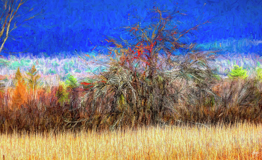 Apple in a Hedgerow No 5 by Wayne King