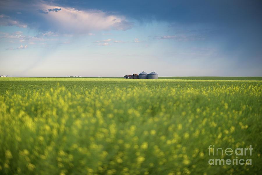Canada Photograph - Approaching Rain by Ian McGregor