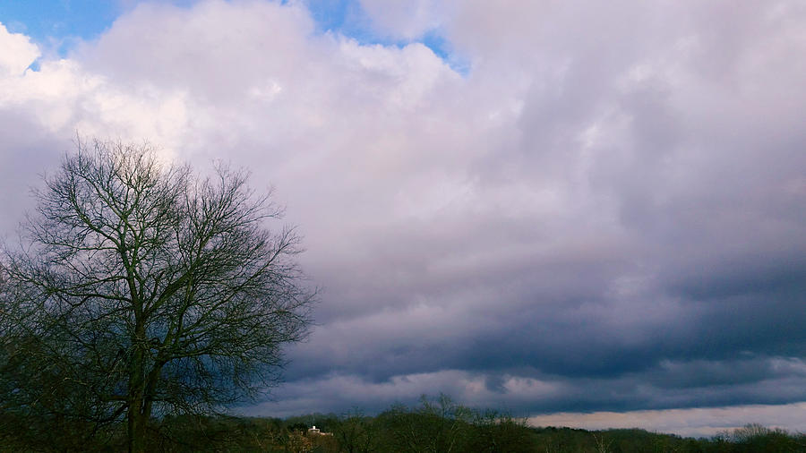 Approaching Storm 1/15/20 by Ally White