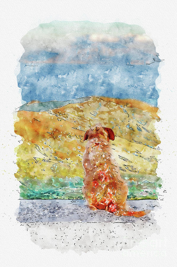 Aquarelle Sketch Art. Lonely Dog Watching On Gibraltar Strait Mixed Media