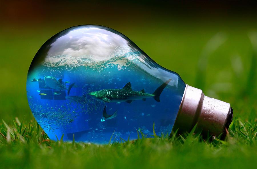 Aquarium In Bulb Digital Art