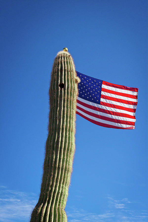 American Flag Photograph - Arizona Flagpole by Jack and Darnell Est