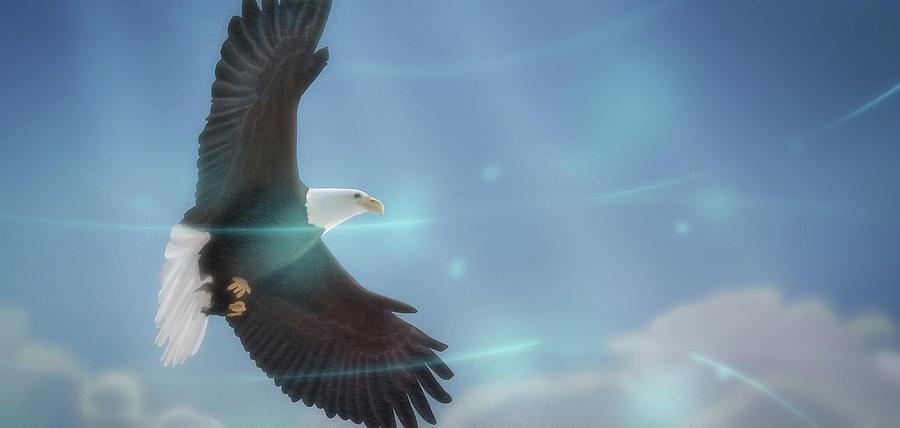 Birds Digital Art - Art - Bird of Freedom by Matthias Zegveld