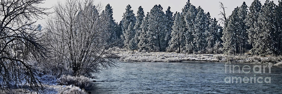Art Of Winter Photograph