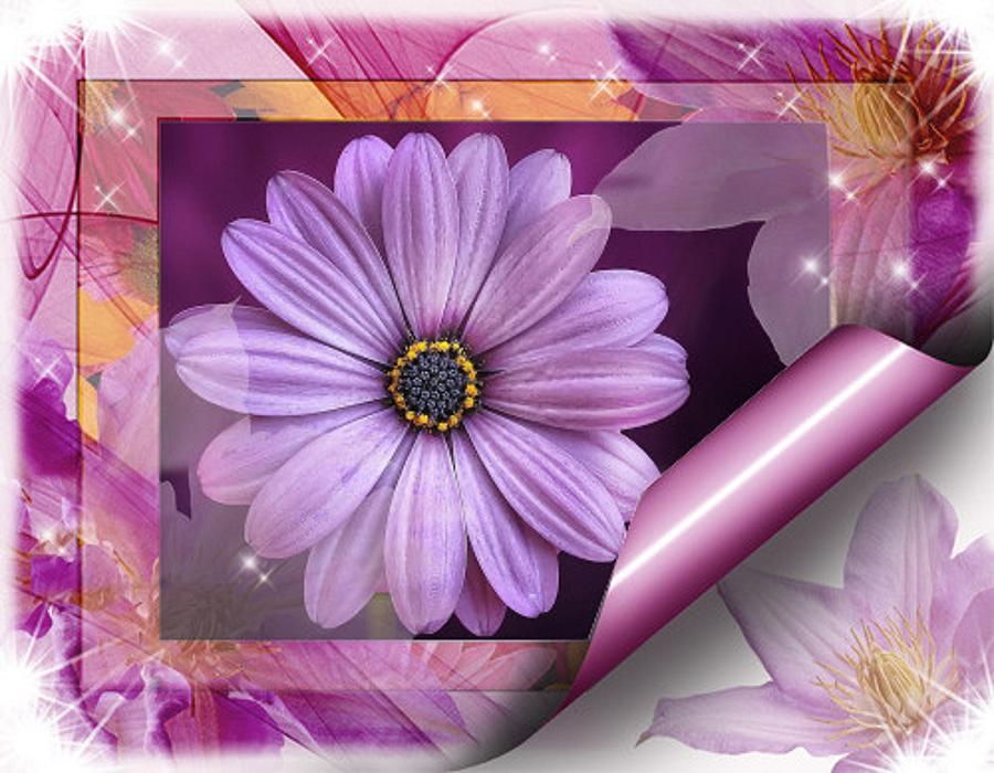 Artistic Lilac Mixed Media