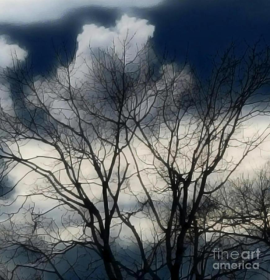 As The Sky Embraces Winter Digital Art