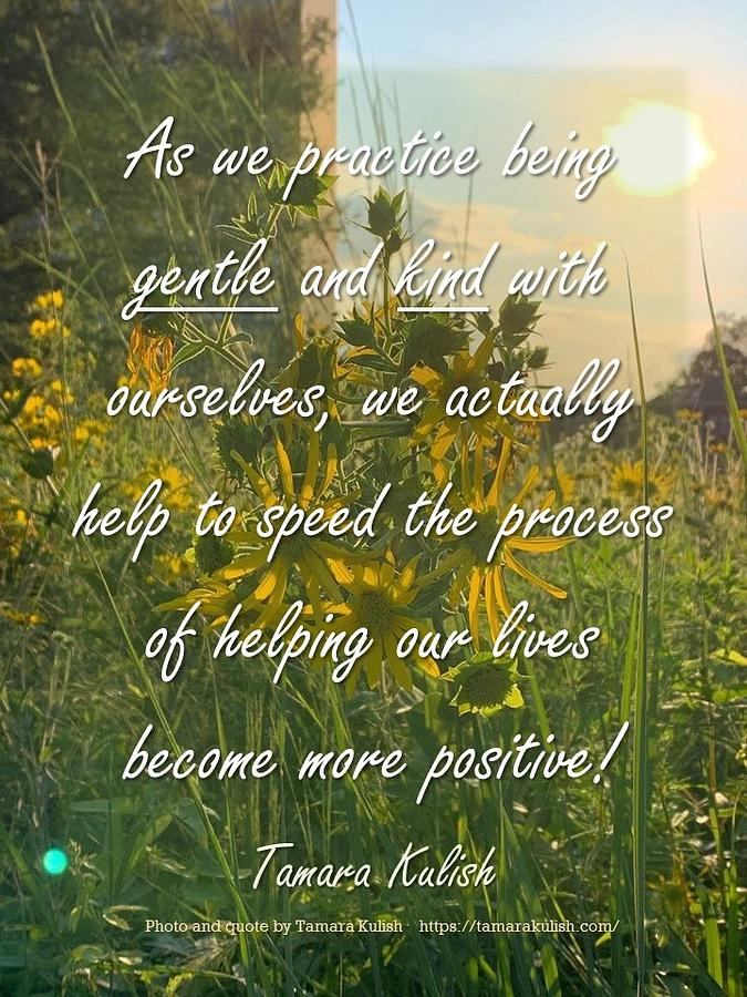 Sunflower Photograph - As we practice being gentle and kind with ourselves by Tamara Kulish