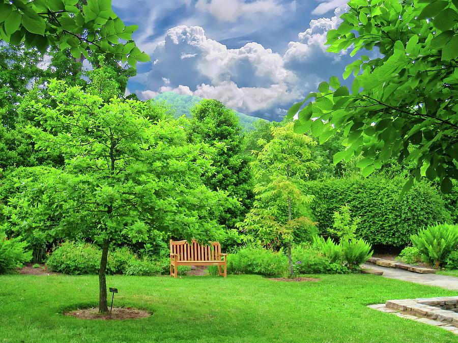 Asheville Botanical Gardens Photograph