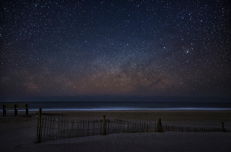 Assateague Stars by Robert Fawcett
