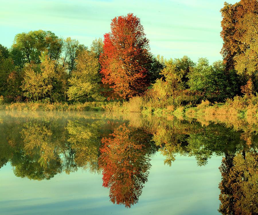 Lake Photograph - At Maynes Pond 2 by Bonfire Photography
