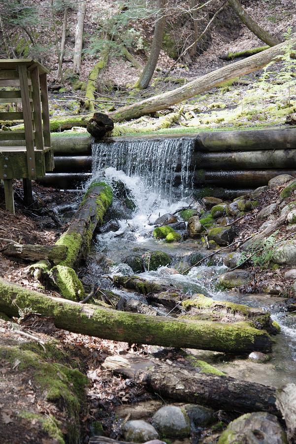 Au Sable River Springs Photograph
