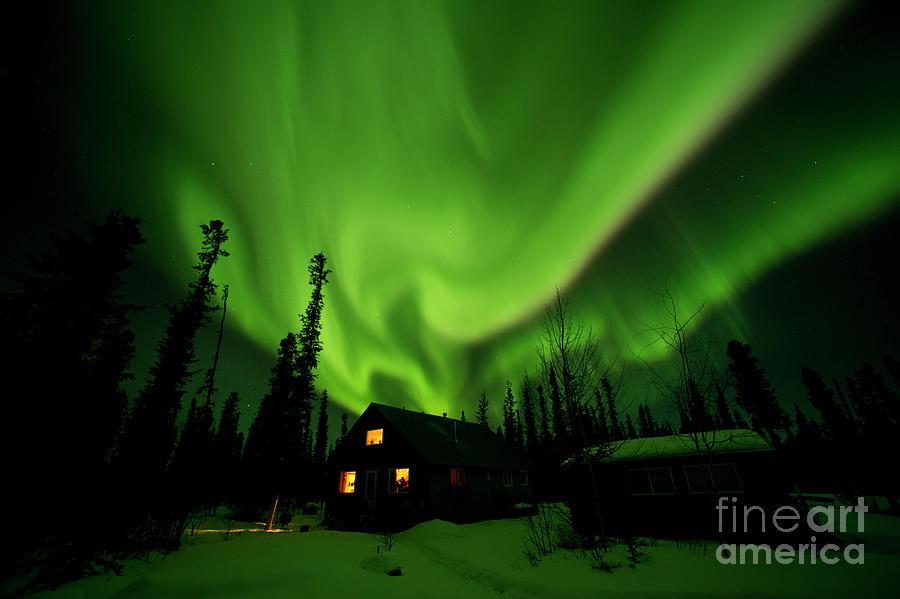 Aurora Borealis Alaska Photograph by Michael Quinton