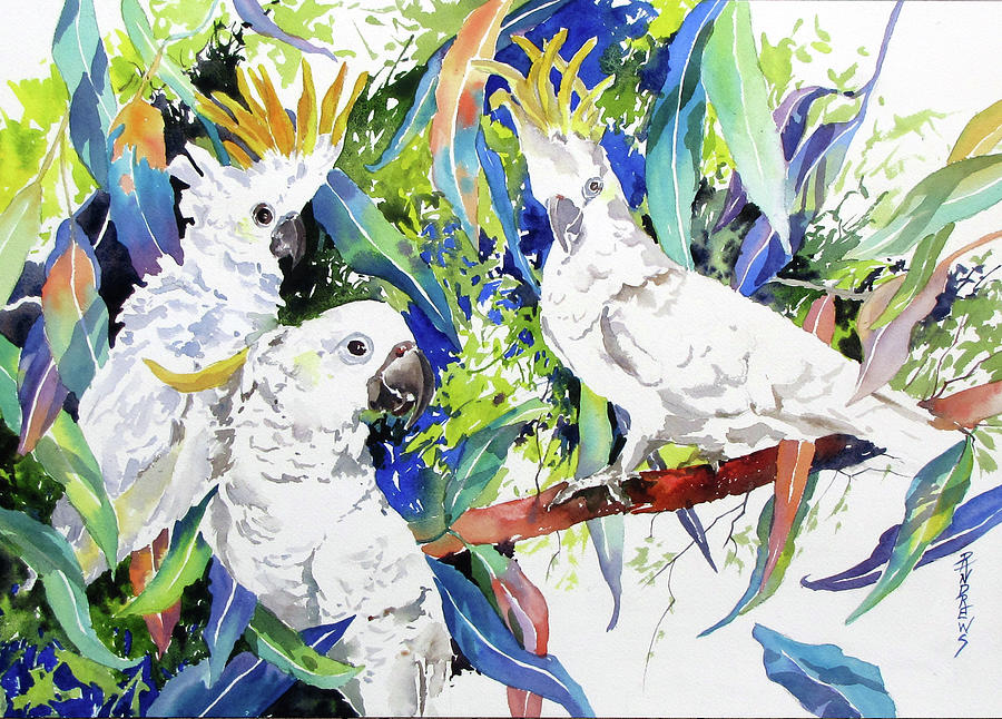 Birds Painting - Aussie Standoff by Rae Andrews