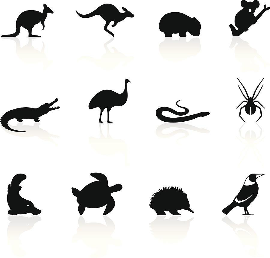 Australian animal icons Drawing by Logorilla