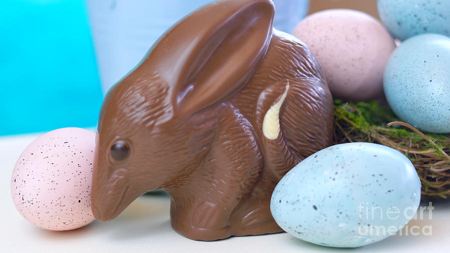 Australian milk chocolate Bilby Easter egg with eggs in nest Photograph by  Milleflore Images