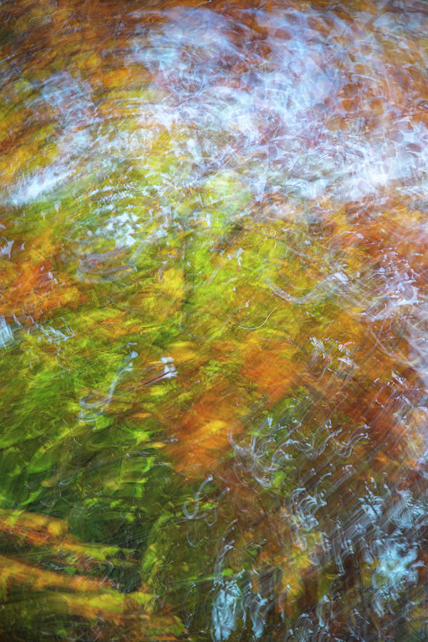 Abstract Photograph - Autumn Abstract in orange yellow and blue by A J Paul