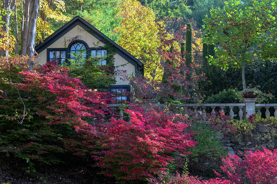 Autumn Architecture by Bill Wakeley