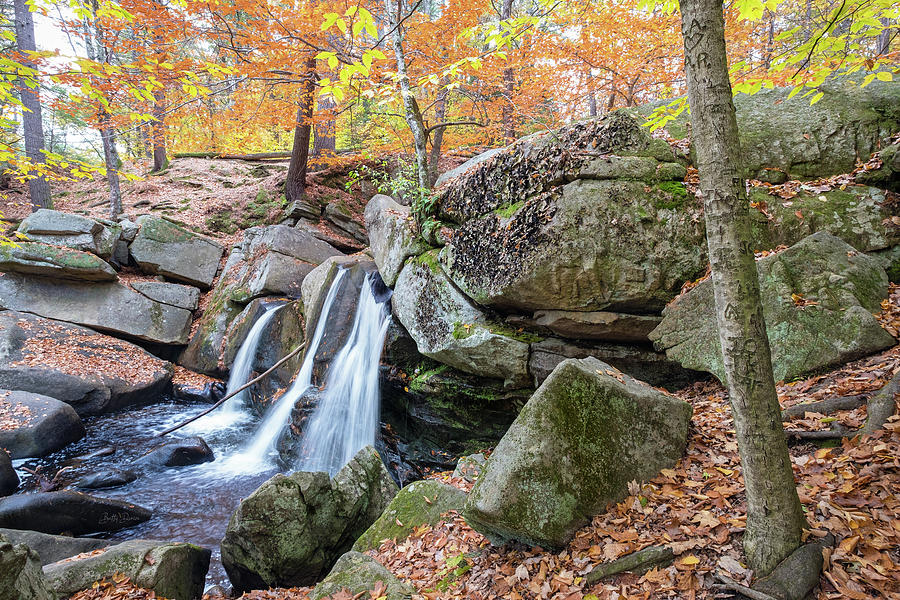 Autumn at Trap Falls by Betty Denise