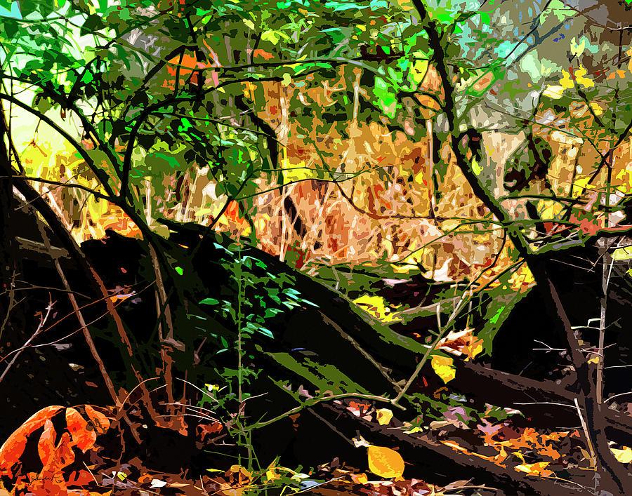 Autumn Colors by Gerlinde Keating - Galleria GK Keating Associates Inc